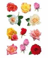 Vergelijk gekleurde rozen bloemen stickervellen met 99 stickers prijs