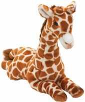 Vergelijk giraffe knuffels liggend 35 cm prijs