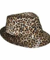 Vergelijk hoedje met luipaard print prijs