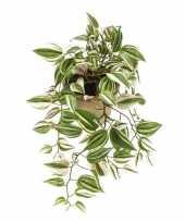 Vergelijk nep planten groene tradescantia vaderplant kunstplanten 70 cm met hangpot prijs
