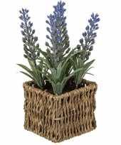 Vergelijk paars lavendel nepplantje in mandje prijs
