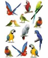 Vergelijk papegaaien vogels met zacht kunststof stickervel met 36 stickers prijs