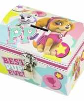 Vergelijk paw patrol skye en everest mint roze speelgoed spaarpot met slotje voor meisjes prijs