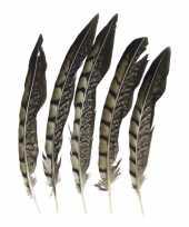 Vergelijk prins carnaval fazant veren 18 cm 5 stuks prijs