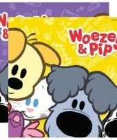 Vergelijk woezel en pip thema servetjes 20 stuks prijs 10121279